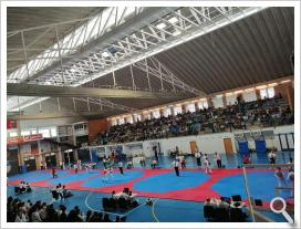 COPA FEDERACIÓN SECTOR OCCIDENTAL DE TAEKWONDO