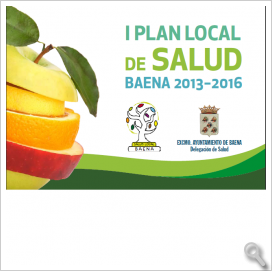 Plan Local de Salud 2013-2016