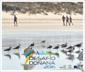 Vídeo Resumen DESAFIO DONANA 2016